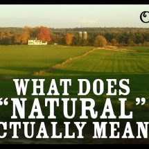 "What Does ""Natural"" Actually Mean? (They Call Me Oystergirl)"