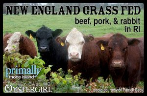 A Visit with New England Grass Fed