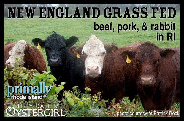 New England Grass Fed (They Call Me Oystergirl/Primally RI)