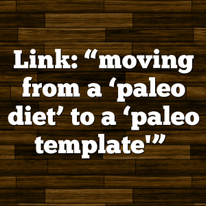 "Link: ""moving from a 'paleo diet' to a 'paleo template'"""